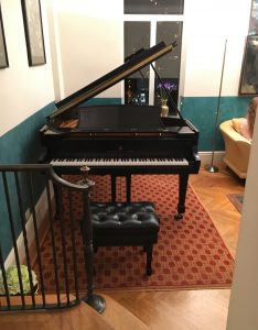 Robin Shoemaker's salon with Steinway